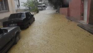 İzmir'de sağanak: Dereler taştı, evleri su bastı