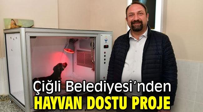 Çiğli Belediyesi'nden Hayvan Dostu Proje!
