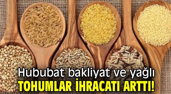 Hububat bakliyat ve yağlı tohumlar ihracatı arttı!